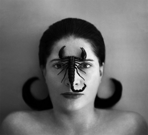 Image result for Marina Abramović art