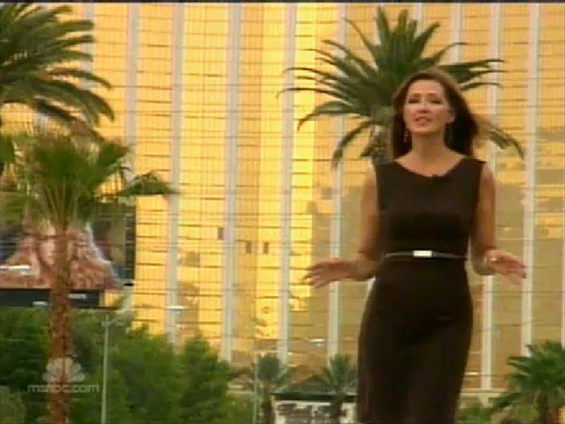 Spicy Newsreaders Chris Jansing Very Hot Milf American -6973