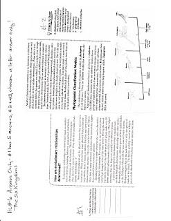 Dr. Gayden's Science Class: April 2010