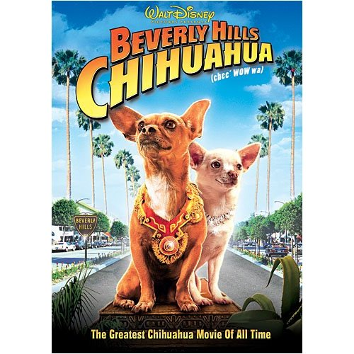 chihuahua movies kirah s blog one of my favorite dog movies to watch 8580