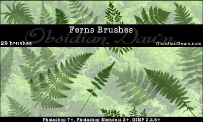 Ferns Photoshop Brushes