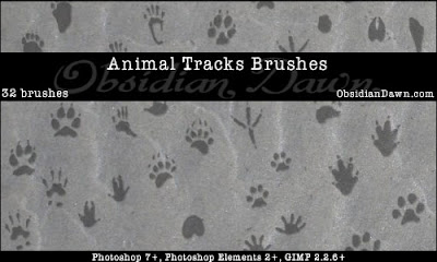 Animal Tracks PS Brushes