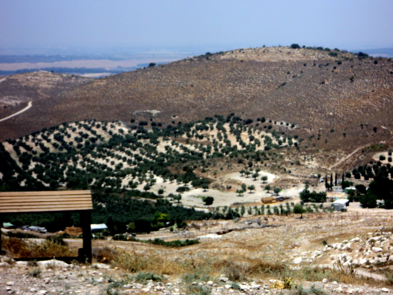 Beth Shemesh Philistines: .ALL THINGS ISRAEL.: Day1: Z'ora [protect Your Eyes]