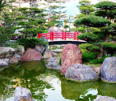 Love at first sight japanese gardens for Jardin kenrokuen