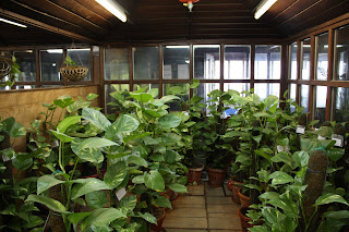 PHOTOS: Inside Delhis Greenest Building That Manufactures
