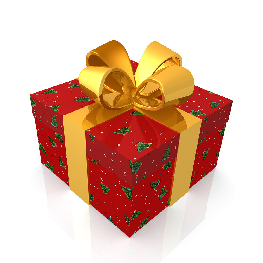 Councillor Mike Leddy: My Christmas Gift For You All