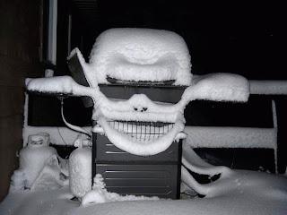 http://4.bp.blogspot.com/_6fuDDzYTaSg/RsWQYP70BnI/AAAAAAAAATA/OOrOda_bOU4/s320/snow_face.jpg