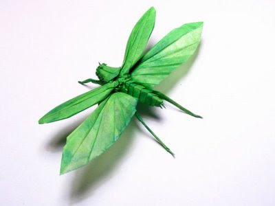 insect origami 15
