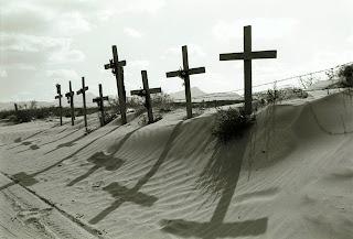ossa nel deserto