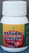 Extract NATURAL LINGZHI