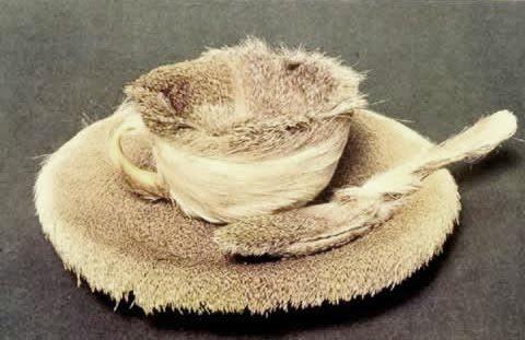 02meret-oppenheim-fur-cup.jpg