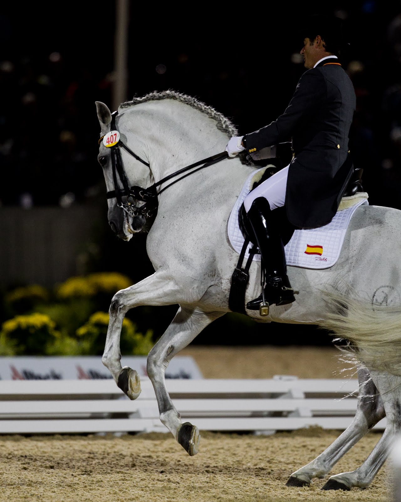 From Racehorse To Showhorse: Dressage Freestyle Finals