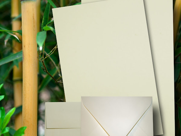 Eco Friendly BAMBOO CardStock & Envelopes