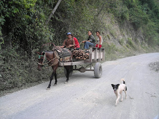 Honduran family on horse and cart