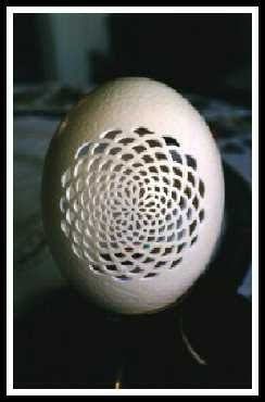 Cool Fun 2012 Egg Shell Art By Laser Amazing Art Of