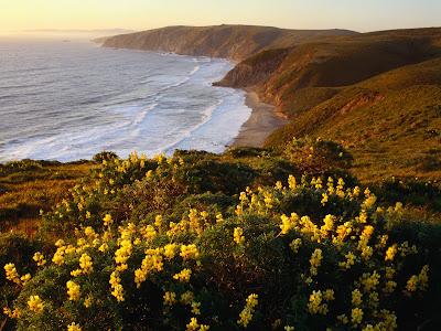 Address Of Seashore Delight Virginia Beach