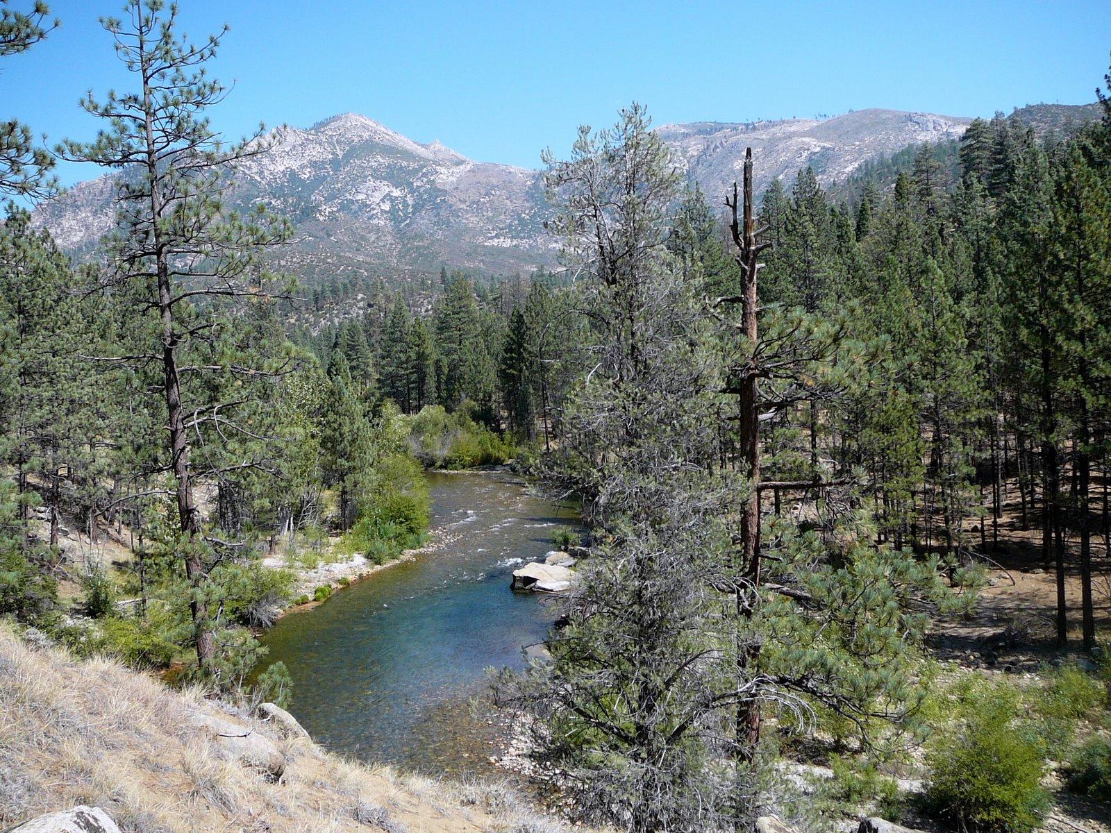 Sierra Sojourner: Backpacking Little Kern to Kern Flat to the Forks