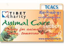 Tibet Charity Animal Care