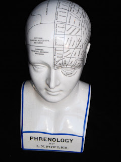 Portobello Antiques Phrenology Head Ca