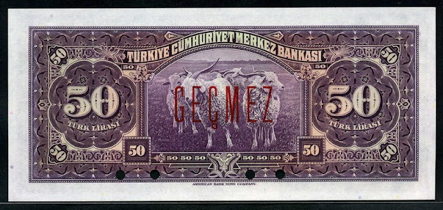Turkey 50 Lira Turkish paper money bills