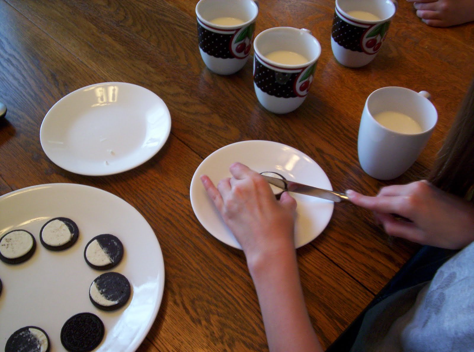 Almost Unschoolers Oreo Moon Phase Activity