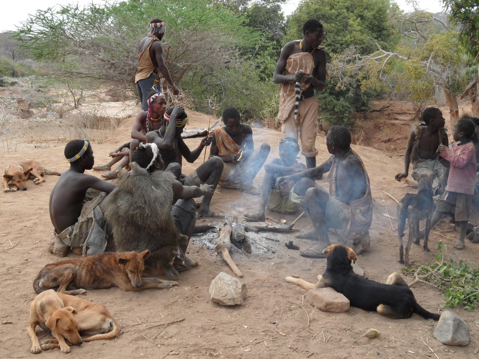 rencontre avec les bushmen