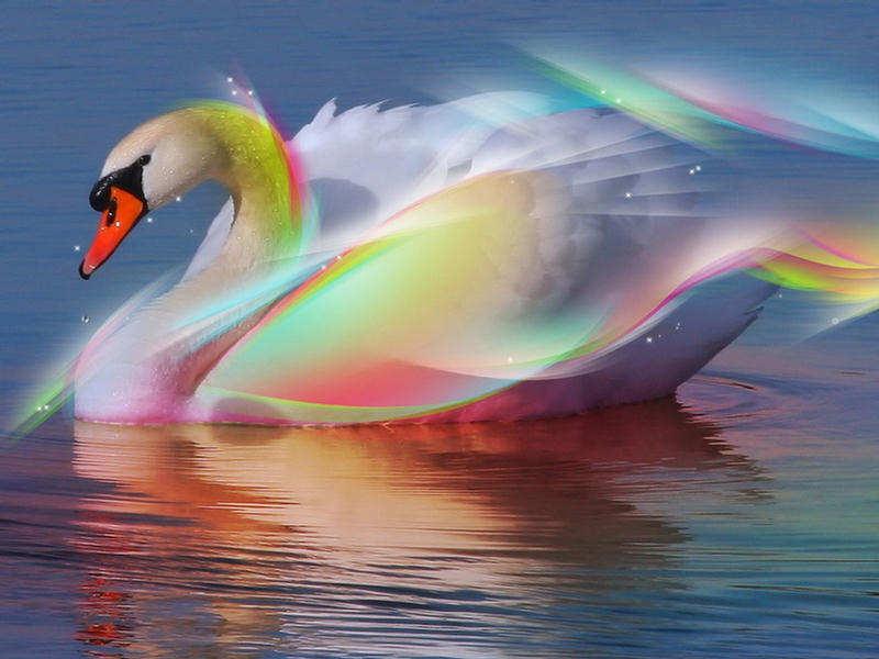 Incredible Amp Cool Colorful Digital Art Wallpapers