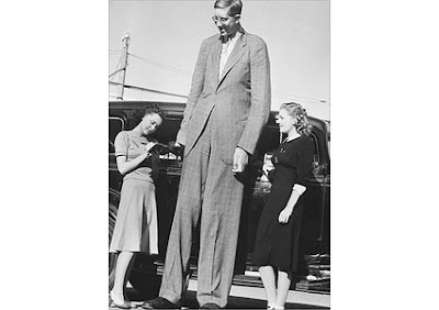 Oveditio The 30 Tallest People Ever