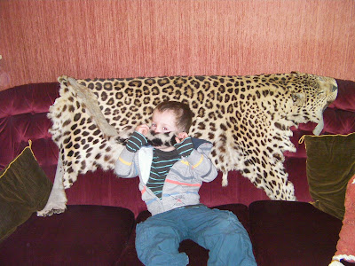 hunting trophy leopard pelt on purple velvet sofa