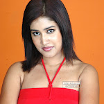 New Tamil Hot Actress Pictures Of Sowmya