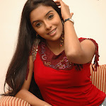 Actress Asin Picture Gallery  ~ Bollywood Sensation   Ghajini