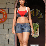 Telugu Actress Hamsa Nandini Hot Bikini Pictures