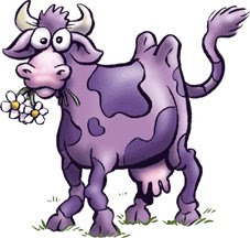 the fabulous ru blog shake shack s purple cow