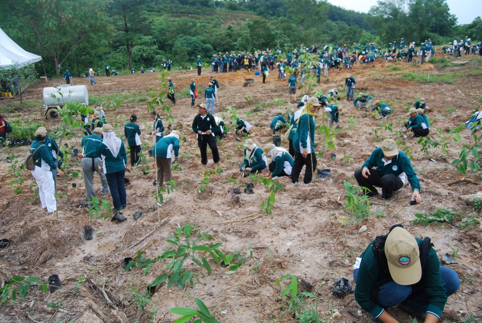 Dr Mat: UPM-Mitsubishi Joint Project Tree Planting