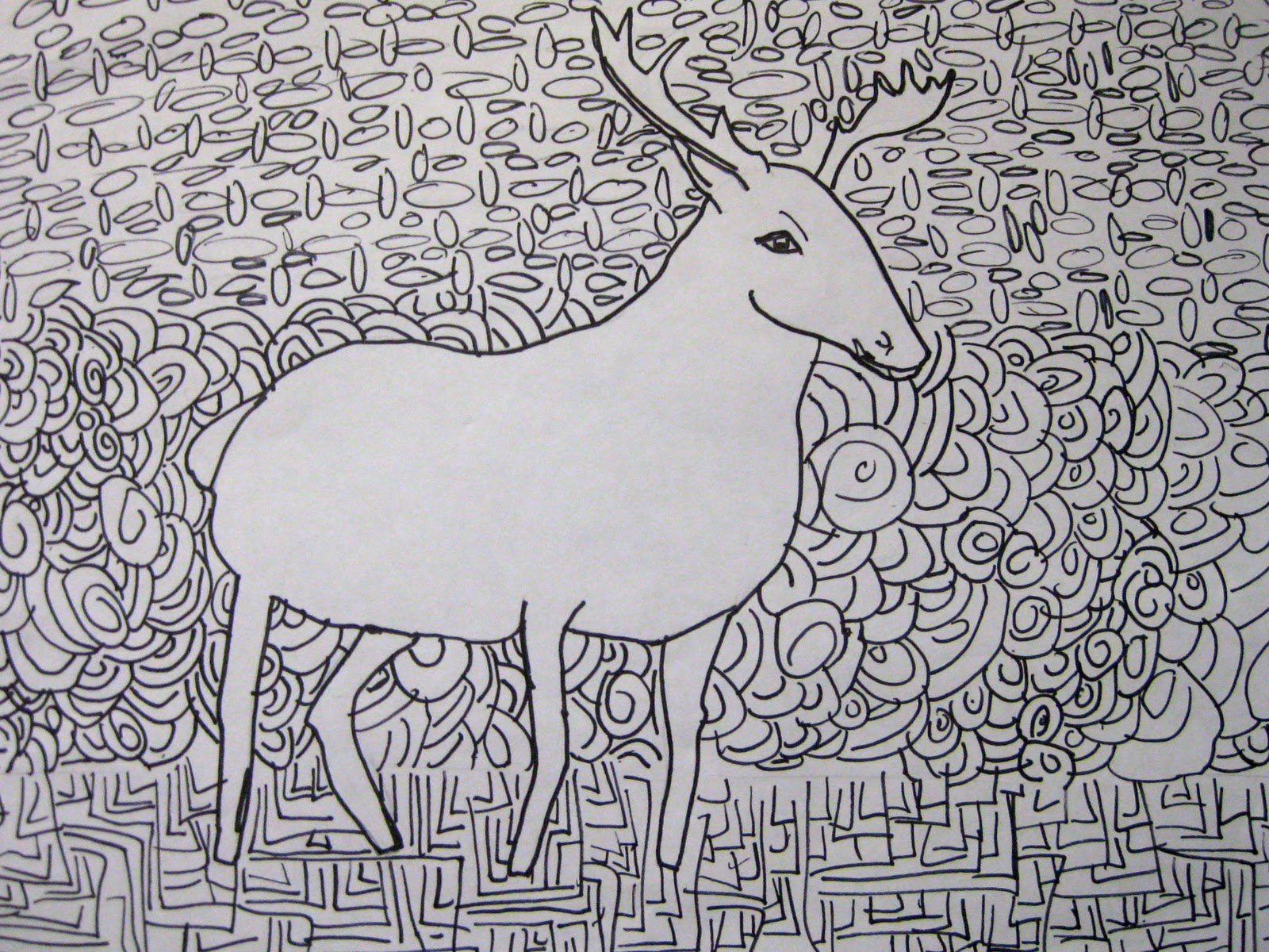 Organized Chaos 7th Grade Contour Line Drawing Of Animals
