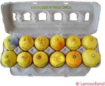 Mod Mom Time To Check Your Lemons For Signs Of Breast Cancer