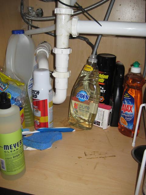 Under The Kitchen Sink Organization C R A F T