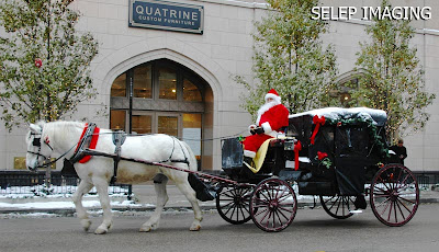 Chicago Christmas Horse Drawn Carriage with Santa by Selep Imaging