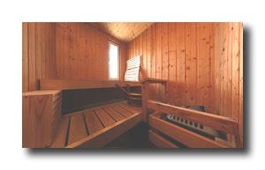 perdi più peso d acqua in una sauna o in un bagno turco