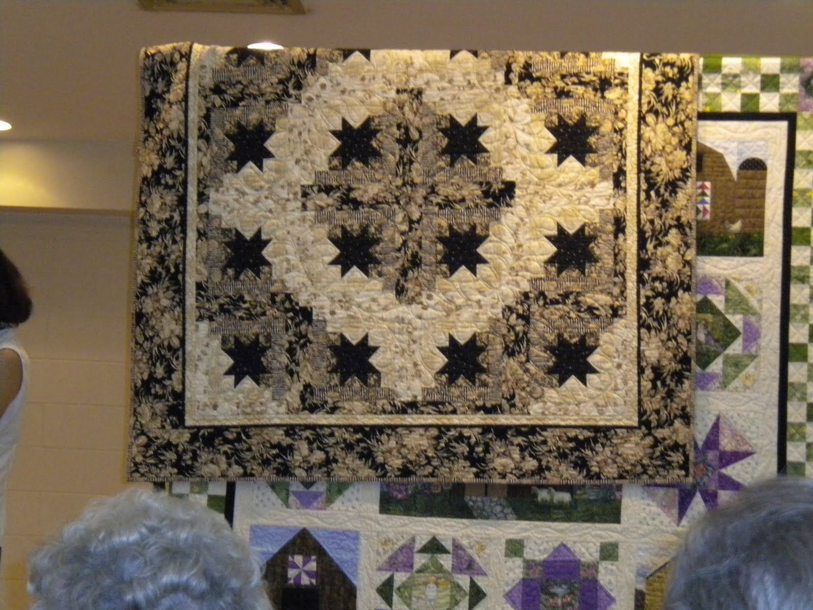 Jackson Patch Quilting Pat Nagle Eleanor Burns Sister