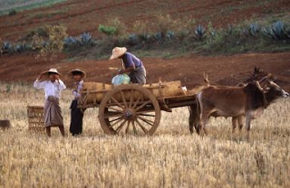 Resultado de imagem para agricultura tradicional