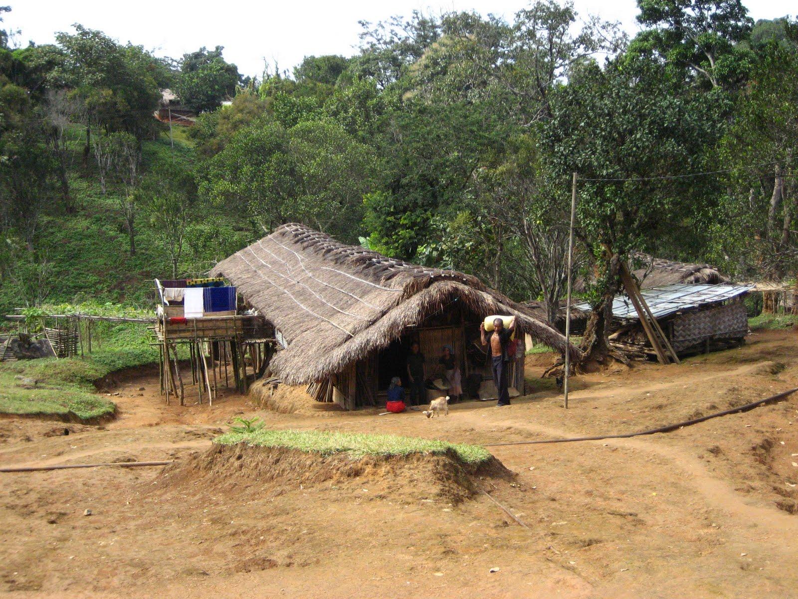 Meghalaya subtropical forests ecoregion