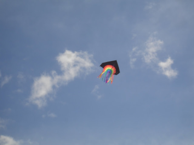 Calm Energy: Kite Flying Sky Watch!