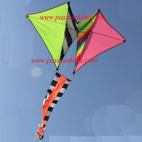 Buy Kites in Singapore: Kites: Giant Part 1