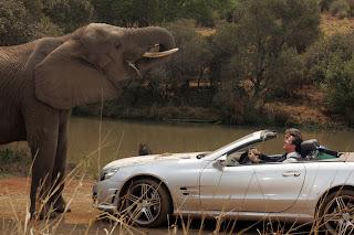 """""""Natale in Sudafrica"""" film"""