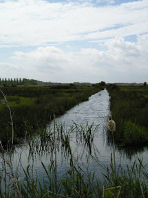 A drainage ditch looking out to Share Marsh