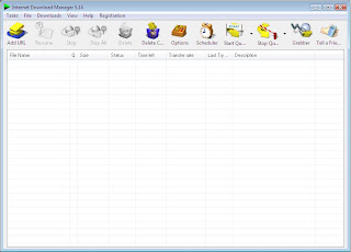 Download everything! : free download internet download manager.