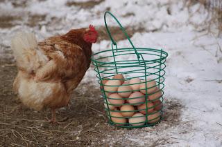 Image result for Egg delivery