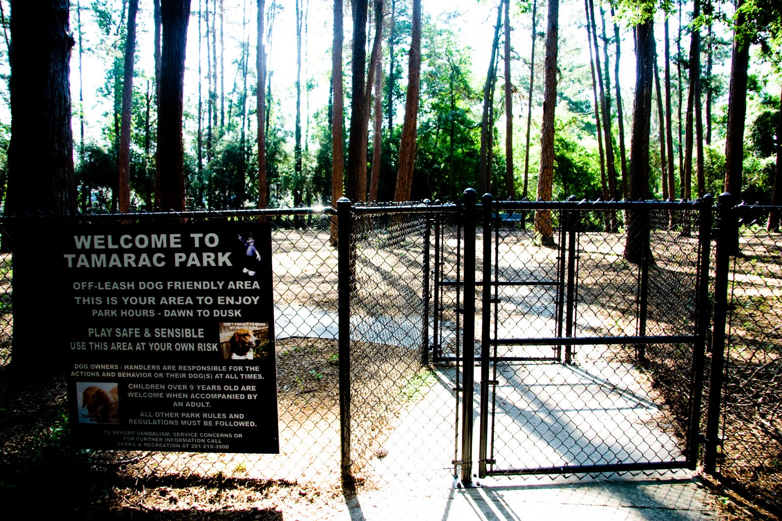The Woodlands Texas Parks Tamarac Dog Park