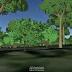 Mayor realismo y arboles 3D en la nueva versión de Google Earth